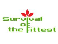 第 4 回『Survival of the fittest』 BEAT(Expert)、Lively bird's talk(Main)、くらぶうたまろ(Open)が優勝