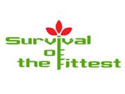 第 13 回『Survival of the fittest』Open 部門 3 位決定戦が 23 時より開催