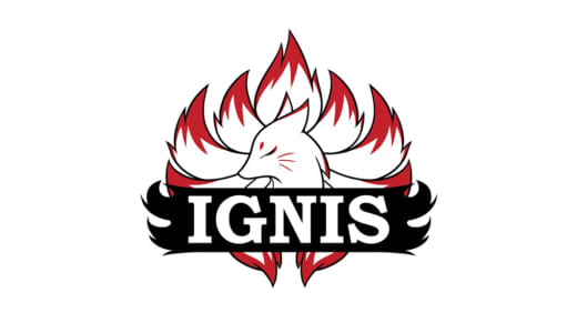 CS:GO日本トップチーム『Ignis』がプロ化を発表、2020年1月1日よりフルタイム制へ、月給20万円以上でコーチを募集開始